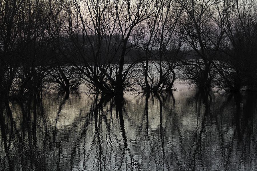 013 Lake Shkoder at dusk in Shkodra, Albania, 2015