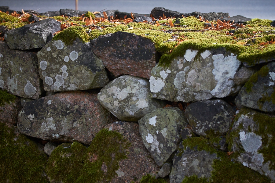 007 Moss-covered stone wall, Fjære Church -- Grimstad, Sørlandet, 2014
